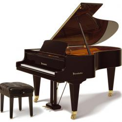 Bosendorfer 200 Grand Piano 6'7""
