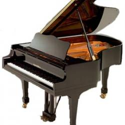 Charles Walter 175 Grand Piano Ebony