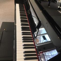 The piano keys as viewed from the side