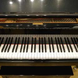 Other Fine Piano Brands Wells Pianos