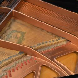 "J.P.Pramberger 5'9"" grand piano model 175 - sounboard"