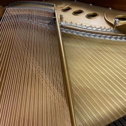 "Steinway Model M Teague Sketch 1111 ""Modern Centennial"" Grand Piano soundboard"