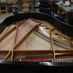 Steinway Model A - Ebony Satin - Belly
