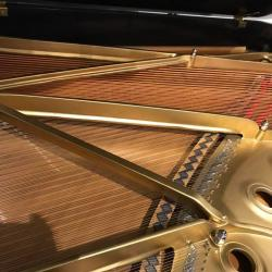 Steinway B Grand Piano Strings