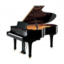 Yamaha-C5-Grand-Piano-Ebony