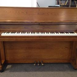 Yamaha P-202 Walnut Studio Piano